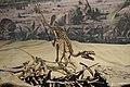 Dromaeosaurus Royal Tyrrell dinorama.jpg