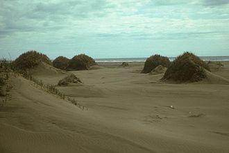 Nunivak Island - Sand dunes and vegetation, Nunivak Island