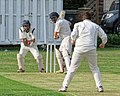 Dunmow CC v Brockley CC at Great Dunmow, Essex, England 15 (cropped).jpg