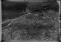ETH-BIB-Aarburg v. S. aus 2000 m-Inlandflüge-LBS MH01-003266.tif