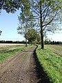 East along Pope's Green Lane - geograph.org.uk - 588333.jpg