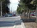 El Calafate Avenida San Martin.jpg