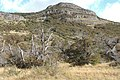 El Chalten-Sendero Salto del Chorrillo (39292858771).jpg