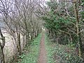Enclosed Footpath, Fonthill Bishop - geograph.org.uk - 689576.jpg