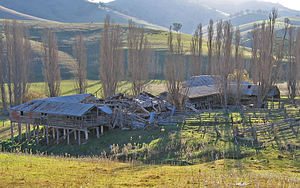 Ensay, Victoria - The remains of the Ensay shearing sheds, formerly part of Ensay Station, on the Little River Rd