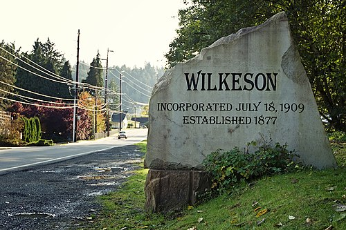 Wilkeson chiropractor