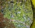 Epidote 10x (39537975912).jpg