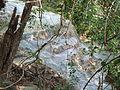Erawan Waterfall Level 7 P1110173.JPG