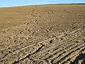 Erosion Netzwerk012.jpg