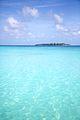 Essential Maldives (COCOA ISLAND-MALDIVES) (9375573151).jpg