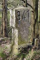 Ex Line Wanne-Eickel Hamburg-km341.JPG