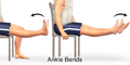 Exercise Ankle Bends.png
