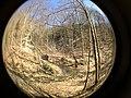 Fall Run Park in Shaler Township, late winter - 35.jpeg