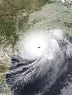 Image illustrative de l'article Cyclone Fani