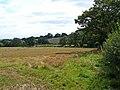 Farmland adjoining Beacon Lane - geograph.org.uk - 1490871.jpg