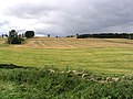 Farmland at Callaly - geograph.org.uk - 542523.jpg