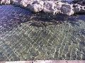 Feneraltı - panoramio (1).jpg