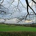 Field - panoramio (45).jpg