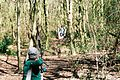 Field archery freestyle recurve.jpg