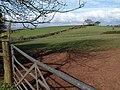 Field beside Deer Park Lane - geograph.org.uk - 763458.jpg