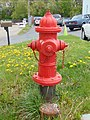 Fire hydrant and dandelions off State Street in Sandy, Apr 16.jpg