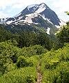 First view of the peaks in the Twentymile Creek wilderness, Alaska (3822866409).jpg