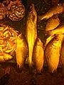 Fish Market of bengali.jpg