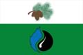 Flag of Kedrovy (Tomsk oblast) (2007).png