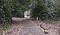 Flickr - Duncan~ - Beckenham Place Park.jpg