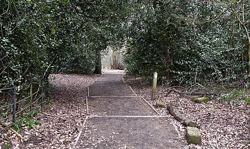 Flickr - Duncan~ - Beckenham Place Park