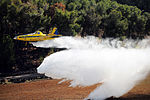 Flickr - Israel Defense Forces - Aerial Firefighting Unit Holds Drill, Year After Carmel Forest Fire.jpg