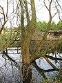 Flooding, Wannock Glen - geograph.org.uk - 1134109.jpg