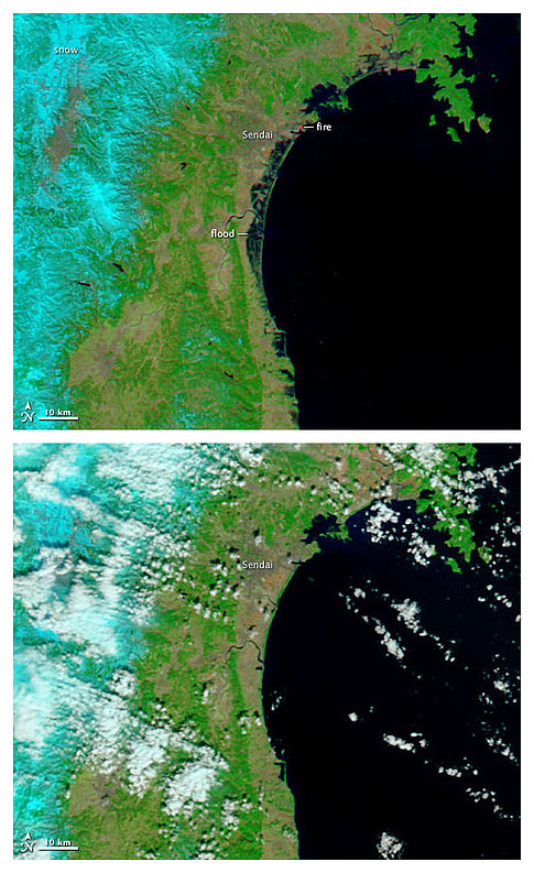 This false-color satellite picture from NASA's MODIS satellite shows the area of Sendai on March 13 (top) and February 26 (bottom) shows how far inland the area near Sendai was flooded by tsunami. A bright orange-red spot near the city of Sendai is the thermal signature from a fire. Image: NASA.
