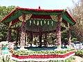 Flower show-9-cubbon park-bangalore-India.jpg