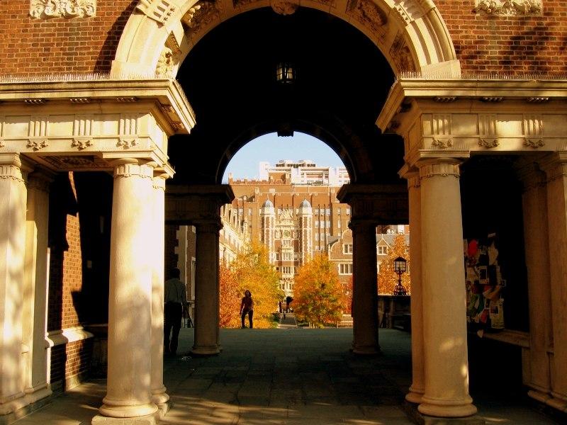 Foliage at Penn 2005 035