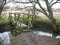 Footbridge - geograph.org.uk - 341341.jpg