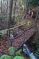 Footbridge in Brakeybank Wood - geograph.org.uk - 1609311.jpg