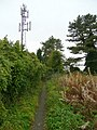 Footpath and phone mast - geograph.org.uk - 1053821.jpg