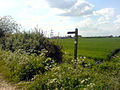 Footpath signpost on Robin Hood Way - geograph.org.uk - 439195.jpg