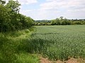 Footpath to Drayton from Shottery - geograph.org.uk - 1909963.jpg