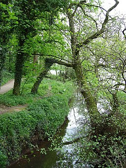 Forge Brook, Marbury Country Park - geograph.org.uk - 651492