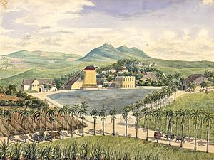 Ernst Heinrich von Schimmelmann - Constitution Hill, the Schimmelmann family's plantation on St. Croix