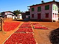 Fresh chillies drying in Kalaw hillcountry (Myanmar 2013) (11772844903).jpg