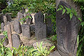 Fukuchiin Nara04n3200.jpg