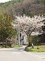Fuse, Saku, Nagano Prefecture 384-2203, Japan - panoramio.jpg