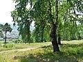 G. Miass, Chelyabinskaya oblast', Russia - panoramio (174).jpg