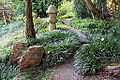General view - San Francisco Botanical Garden - DSC00055.JPG