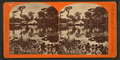 General view of Silver Springs, Fla, from Robert N. Dennis collection of stereoscopic views.png