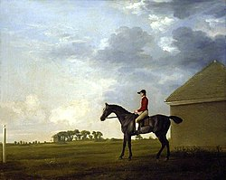 George Stubbs (1724-1806) - Gimcrack with John Pratt up on Newmarket Heath - PD.7-1982 - Fitzwilliam Museum.jpg