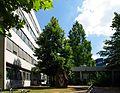 Geoscience, University of Cologne 4.JPG